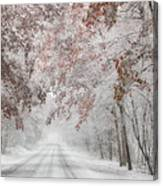 Autumn Wonderland Canvas Print