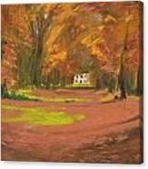 Autumn Woods 3 Canvas Print