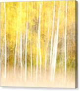 Autumns Abstract Canvas Print