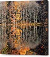 Autumns Art Canvas Print