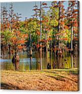 Autumn's Beauty And Reflection Canvas Print