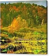Autumn's Glory Canvas Print