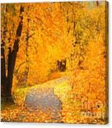 Autumn's Golden Corner Canvas Print