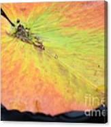 Autumn's Pastel Pallet Canvas Print