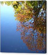 Autumn's Watery Reflection Canvas Print