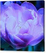 Avatar's Tulip Canvas Print