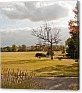 Avery Hill Parkland Canvas Print