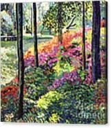 Azalea Forest Grove Canvas Print