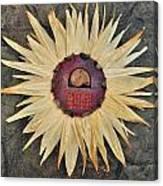 Aztec Industry  Canvas Print