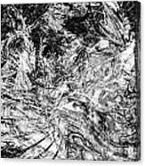 B-w 0502 Canvas Print