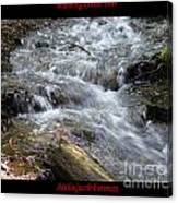 Babbling Brook Two Canvas Print
