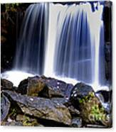 Babcock State Park Waterfall Canvas Print