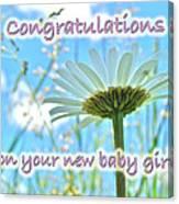 Baby Girl Congratulations Greeting Card - Oxeye Daisies Canvas Print