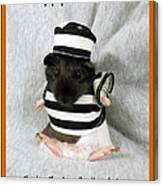 Baby Guinea Pig Trick Or Treat Canvas Print