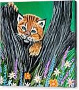 Baby Lynx Canvas Print