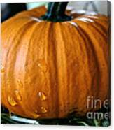 Baby Pumpkin Tears Canvas Print
