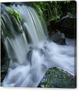 Baby Waterfall Canvas Print