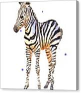 Baby Zebra Nursery Animal Art Canvas Print