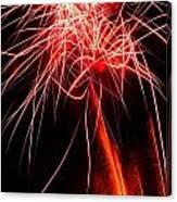 Backyard Fireworks 2012 4 Canvas Print