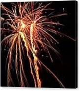 Backyard Fireworks 2012 5 Canvas Print