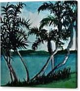 Backyard Palms Canvas Print
