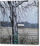 Backyard Panoramic Canvas Print