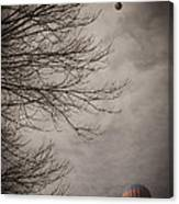 Balloons In The Pines Canvas Print