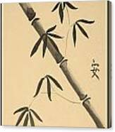 Bamboo Art In Sepia Canvas Print