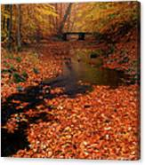 Bamboo Brook Chester New Jersey Canvas Print