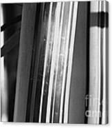 Bamboo Closeup Canvas Print