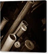 Bamboo Poles 1 Canvas Print