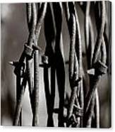 Barbbed Wire 2 Canvas Print