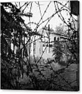 barbed wire across no mans land and restricted area of the UN buffer zone in the green line Canvas Print