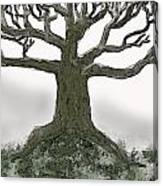 Bare Branches I Canvas Print