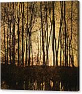Fall Trees On A Lake Canvas Print