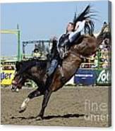 Rodeo Bareback Riding Canvas Print