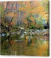 Barkshed Creek Toned Canvas Print