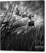 Barley And The Pump Mono Canvas Print