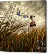 Barley And The Pump Canvas Print