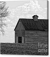 Barn And Tree In Black And White Canvas Print