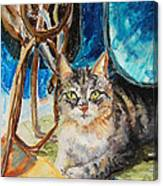 Barn Cat Canvas Print