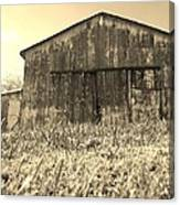 Barn In Brown Canvas Print