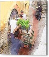 Basil Delivery In Eze France Canvas Print