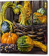 Basket Full Of Gourds Canvas Print
