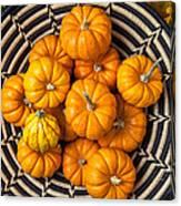 Basket Full Of Small Pumpkins Canvas Print