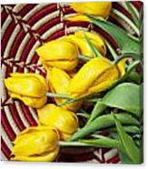 Basket Full Of Tulips Canvas Print