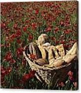 Basket Of Bread In A Poppy Field Canvas Print