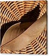 Basket Of Brown Canvas Print