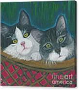 Basket Of Kitties Canvas Print