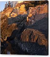 Bass Harbor Lighthouse Sunrise Acadia National Park Canvas Print